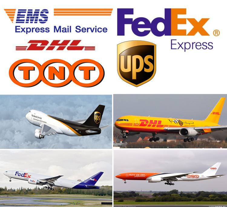 drop shipping express